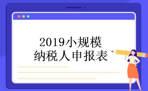 2019小规模纳税人申报表